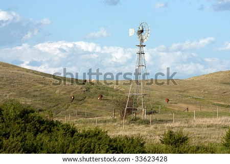 A windmill and cows grazing on the rolling hills of the Canadian Prairies. - stock photo