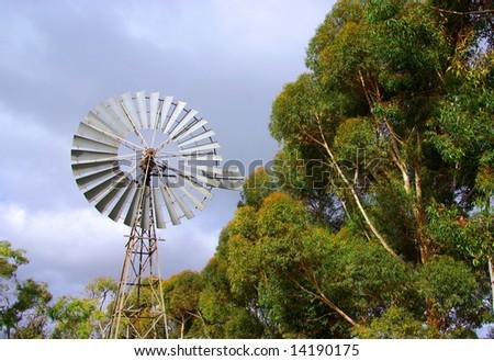 A windmill & native eucalyptus trees at Tintinara (Australia). - stock photo