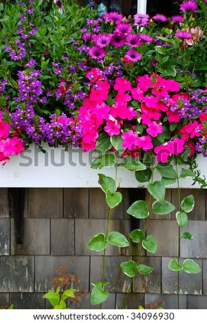 A window box planted with a variety of brightly colored flowers and plants. - stock photo