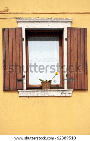 A window with open wooden shutters, lace curtains and yellow flower against a plastered textured wall. - stock photo