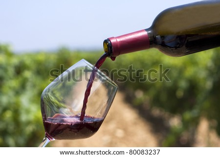 A wine bottle with a vineyard as background - stock photo