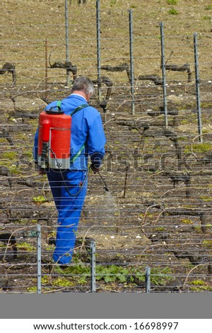A wine farmer sprays his vines in early spring - stock photo