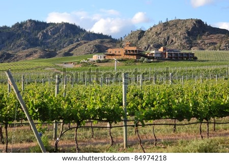 A winery and hotel set in the middle of a vineyard near Osoyoos at the southern end of the Okanagan Valley. British Columbia, Canada. - stock photo
