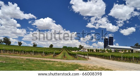 A winery in the Adelaide Hills, South Australia.