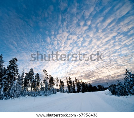 a winter scenery in the north of sweden - stock photo