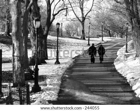 A winter stroll in black and white
