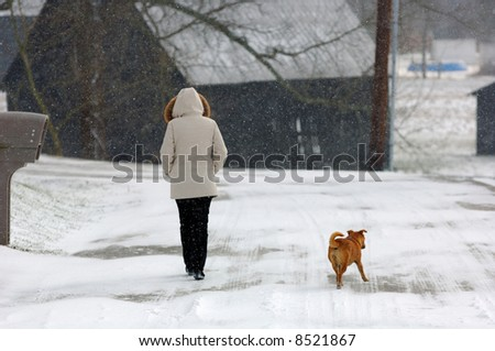 A Winter Walk - stock photo