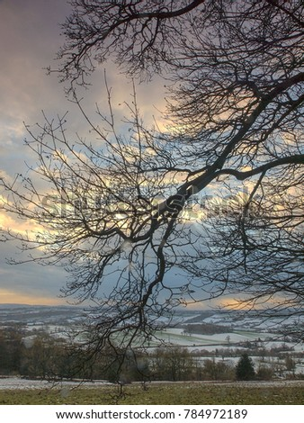 A wintery day through the branch of a tree over the Bromyard Downs in Herefordshire, UK.