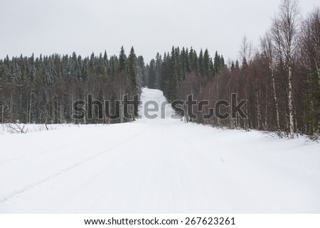 A wintry road in the countryside in winter.  - stock photo
