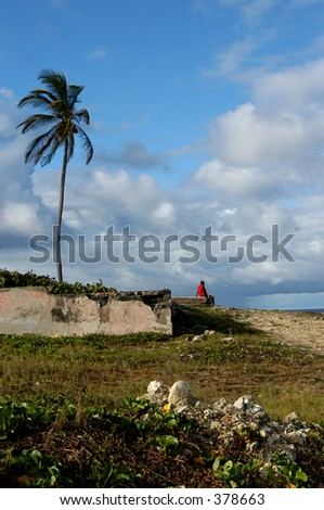 A woman and tree in Barbados - stock photo