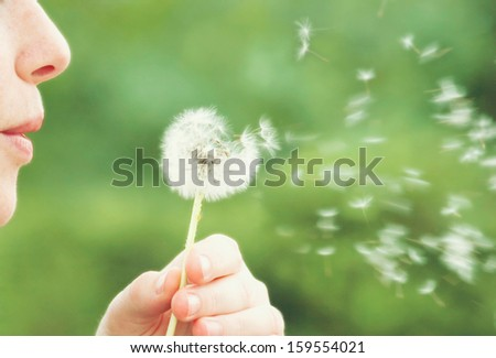 a woman blowing on a dandelion muted colors vintage toned - stock photo
