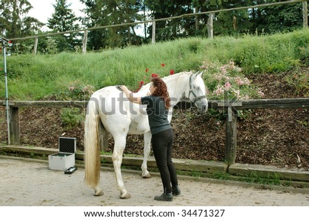 A woman cleans a horse.