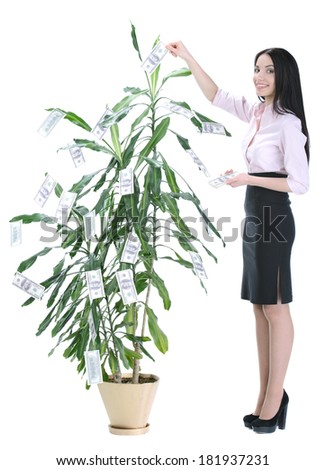 A woman reaching up picking money off a tree on white background - stock photo