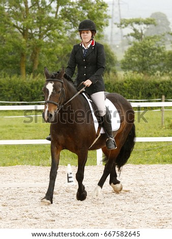 A woman rides her bay horse (a Welsh Section D Cob) in a riding arena during a dressage competition