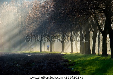 A woman running through a foggy sun ray lit park path. The path is surrounded  by a beautiful avenue of trees. - stock photo