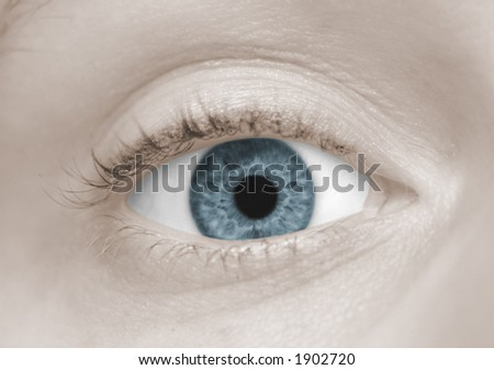 A Woman's Blue Eye - stock photo