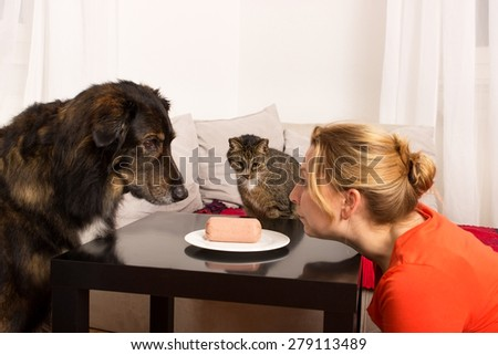 A woman sitting with a dog and a cat in front of a plate with sausage - stock photo
