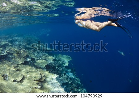 A woman snorkeling trip in blue lagoon of a paradise island. Picture take in Ari atoll - Maldives. - stock photo