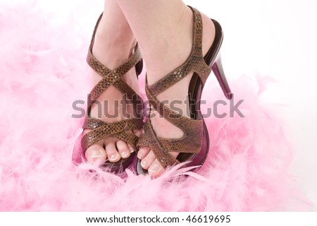 A woman standing in a pile of pink feathers wearing her brown heeled shoes showing off her toes. - stock photo