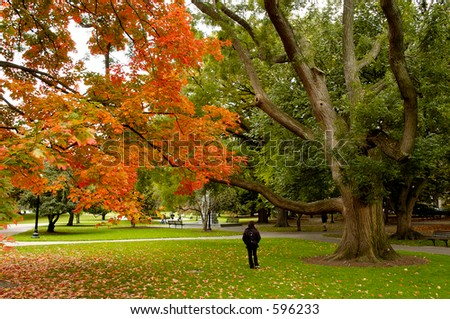 A woman taking a walk through the park during Autumn - stock photo