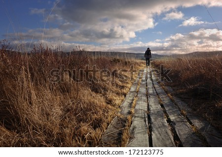A woman walking along boardwalk on wetland in the evening - stock photo