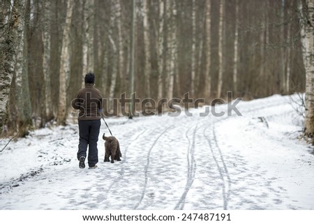 A woman walking the dog in the park. - stock photo