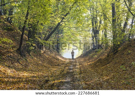 A woman walks through the forest in autumn. - stock photo
