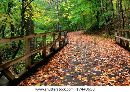 A wooden bridge covered in leaves that leads in to a walking path. - stock photo
