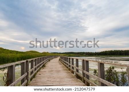 A wooden bridge over a marsh in the Cavendish Dunelands (Green Gables Shore, Prince Edward Island, Canada) - stock photo