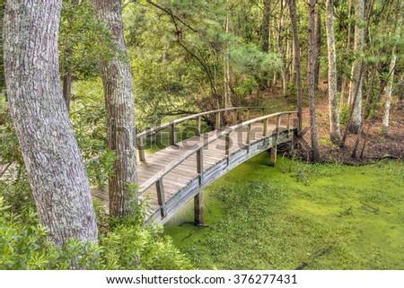 A wooden footbridge crosses the swamp in coastal North Carolina's Nags Head Wood. - stock photo