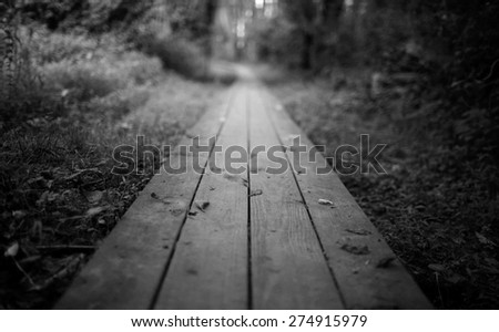 A wooden footpath - stock photo