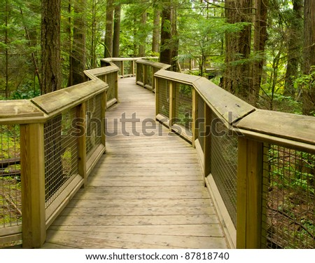 A wooden pathway wanders through coastal evergreen forest near Vancouver BC Canada - stock photo