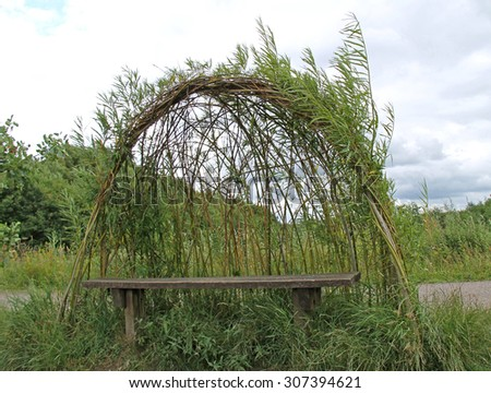 A Wooden Seat Set Under a Growing Willow Shelter. - stock photo