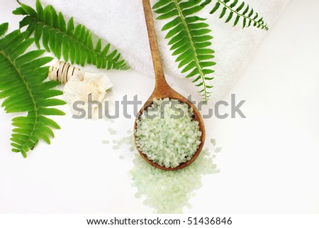 A wooden spoon filled with green bath salts. Shallow DOF with selective focus on salt. Room for text. - stock photo