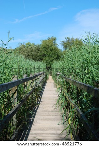 A wooden walkway across a wetlands nature reserve - stock photo