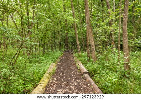 A woodland trail in Missouri. - stock photo
