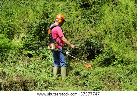 A worker using a brush cutter to cut down a jungle of undergrowth. Space for text against the greenery.