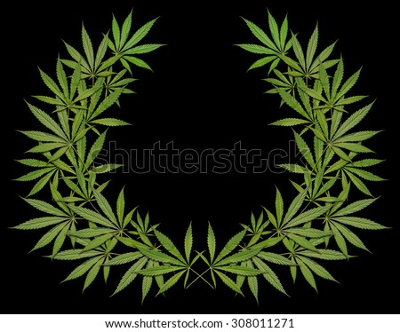 A wreath of cannabis on a black background - stock photo
