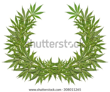 A wreath of green leaves cannabis - stock photo