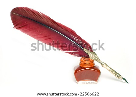 a writing feather isolate on white - stock photo