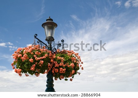 a wrought iron light post adorned with pink geranium hanging baskets