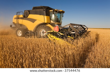 A yellow  combine harvester working in a wheat field - stock photo