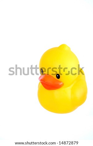 A Yellow Rubber Duck Isolated on White Background