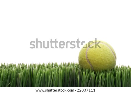 A yellow tennis ball on green blades of grass