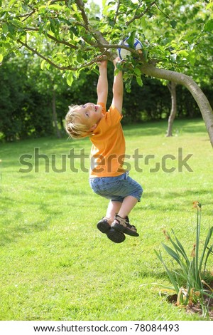A young boy climbs a tree - stock photo