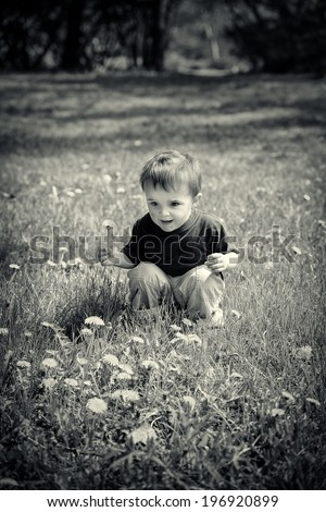 A young boy sits in a field holding a dandelion flower.  Black and white image toned for a vintage look.  - stock photo