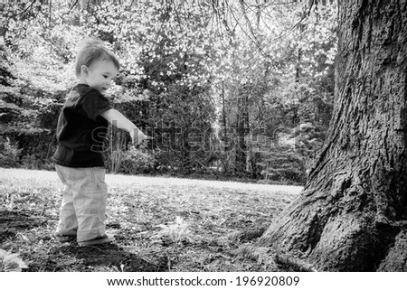 A young boy stands beside a tree in a park pointing to something on the ground. Processed in black and white  - stock photo