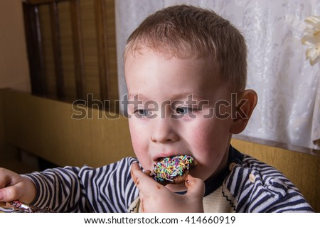 A young caucasian boy eat gingerbread - stock photo