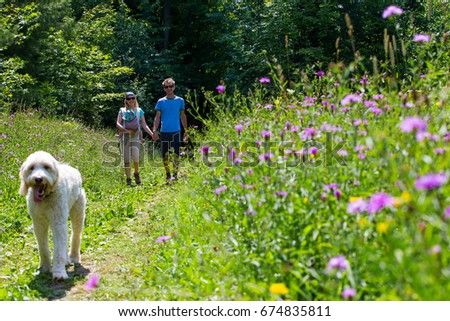 A Young Family Hiking With Their Dog And Newborn In The Forest