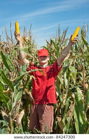 a young farmer in a corn field - stock photo